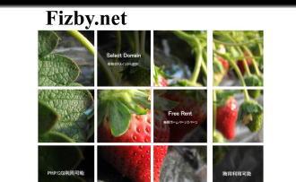 Fizby.net